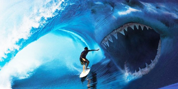 These are the world's deadliest animals! 1