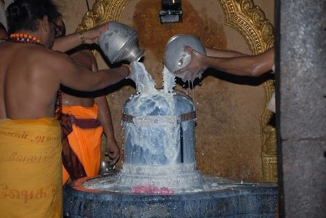 Seasonal process for milk. Milk as prasad offered to Shiva is consumed.
