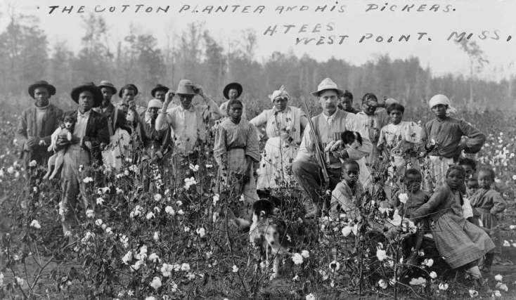 Cotton_planter_and_pickers1908