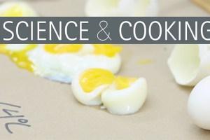 Harvard: Curso de Ciência de Alimentos e Gastronomia Gratuito