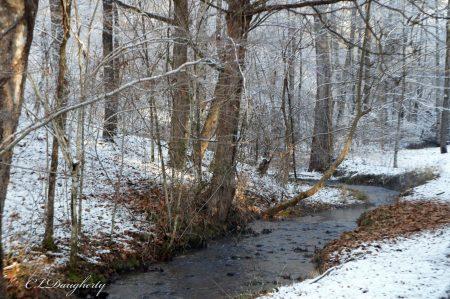 Sunny Snowy Creekside
