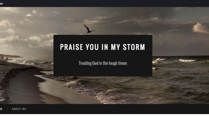 praise you in my storm logo