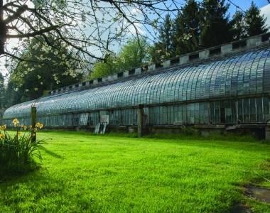 Felton Park Glasshouse
