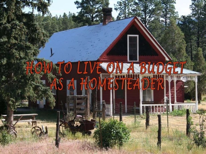 Prepper's Will - How To Live On A Budget As A Homesteader