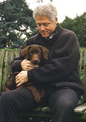 bill-clintons-dog-buddy