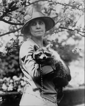 grace-coolidge racoon