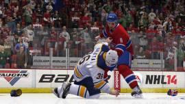 NHL-14-©-2013-EA-(10)
