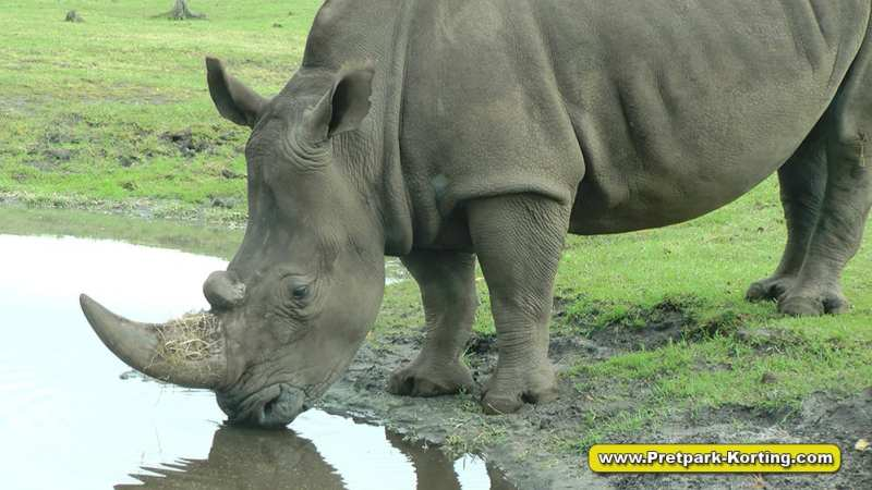 Serengeti Park dierentuin attracties duitsland report 16