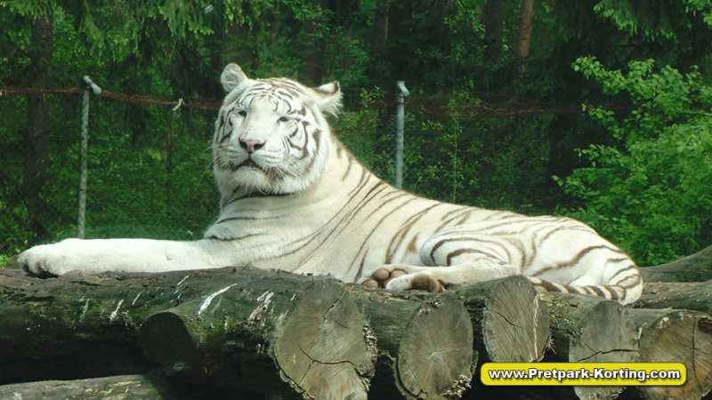 Serengeti Park dierentuin attracties duitsland report 6