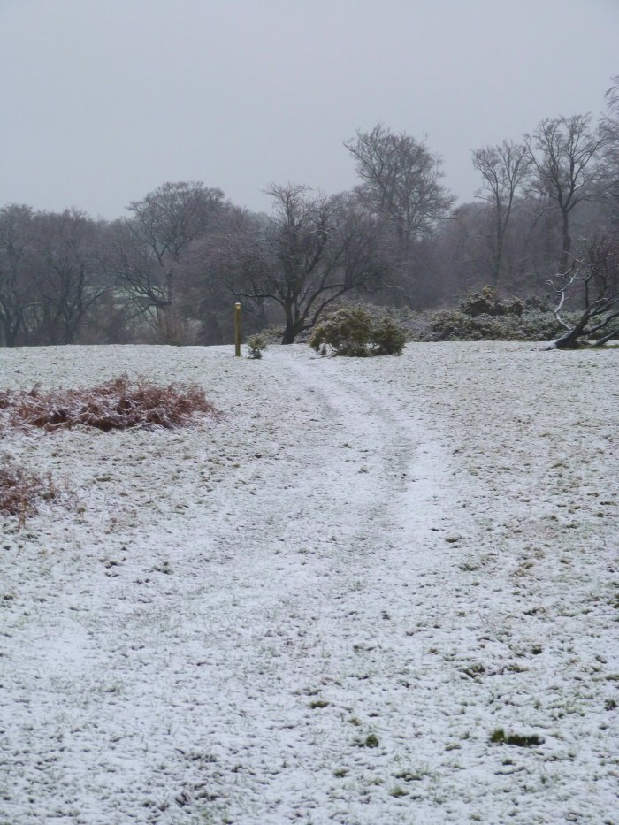 neige a londres