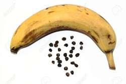 Small Of Banana With Seeds