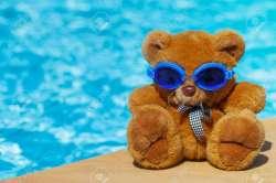 Small Of Teddy Bear Pools