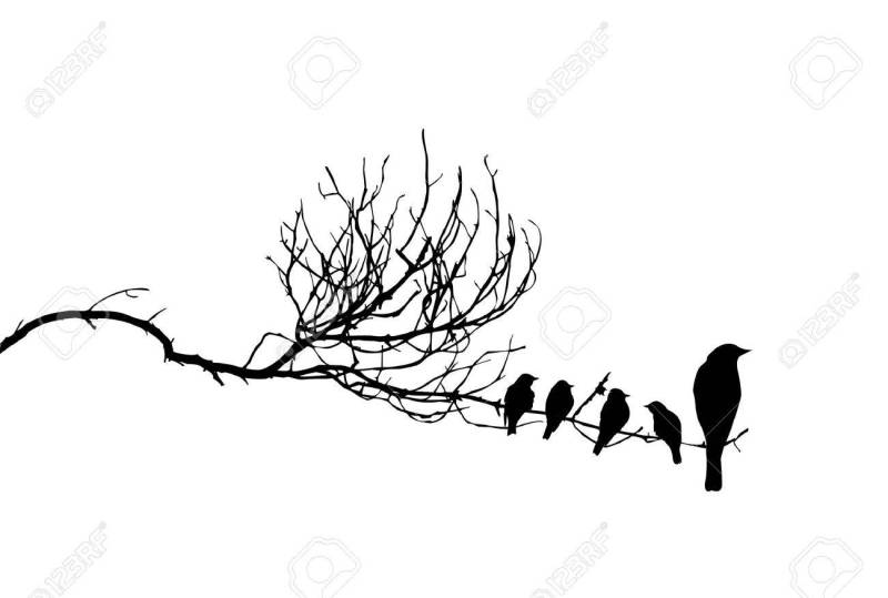 Charming Birds On Branch Royalty Free Cliparts Birds On A Branch Images Birds On A Branch Drawing Vector Vector Silhouette Birds On Branch Vector Silhouette