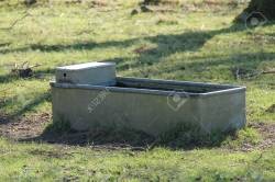 Small Of Metal Water Trough