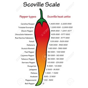 Rousing Scoville Pepper Heat Scale Vector Stock Vector Scoville Pepper Heat Scale Vector Royalty Free Vectors Chocolate Pepper X Scoville Pepper X Scoville Level