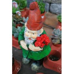 Popular Royalty Small Garden Gnomes Small Garden Gnome Statue A Small Garden Stock Photo Close Up A Small Garden Stock Close Up