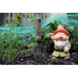 Small Crop Of Small Garden Gnome