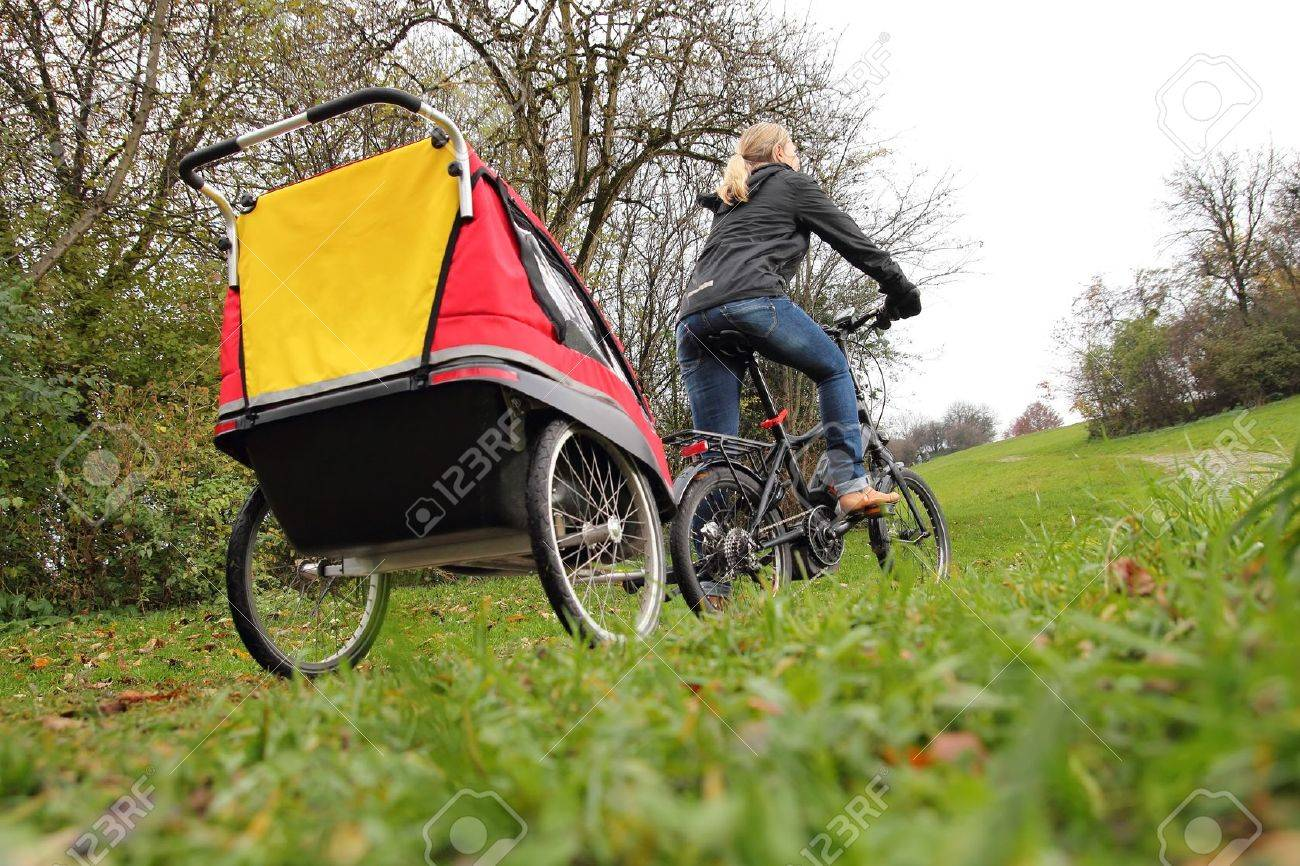 Fullsize Of Child Bike Trailer