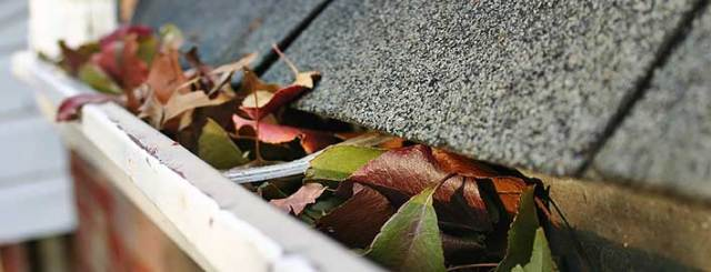 Gutters clogged