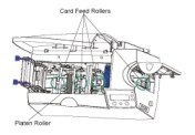 Cleaning Platten Roller Fargo DTC550