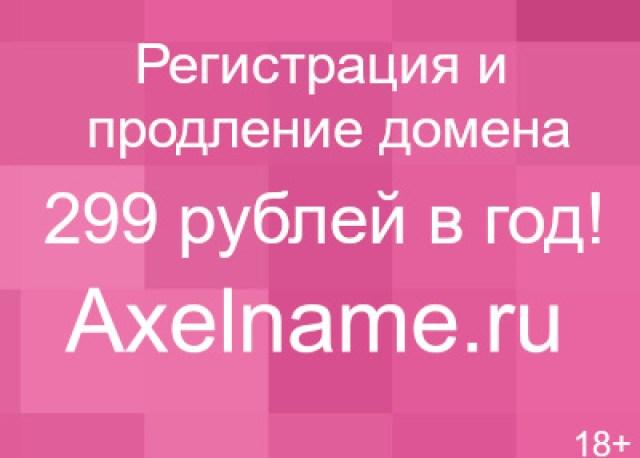 1423480217_master-klass-risuem-sherstju6