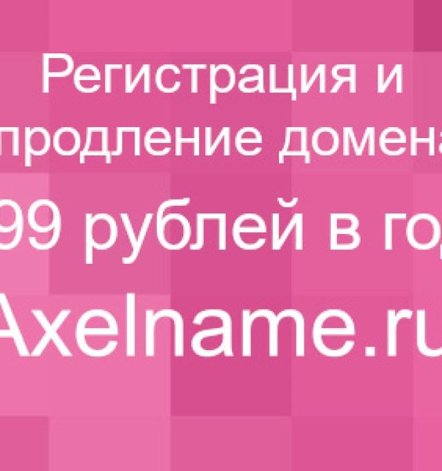 Klumby_svoimi_rukami_048