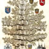 Stammbaum Familie Fresenius