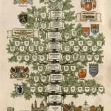 Stammbaum Familie Merklein