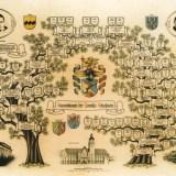Stammbaum Familie Schafstein