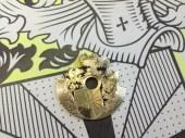 Der fertig skelettierte Goldrotor