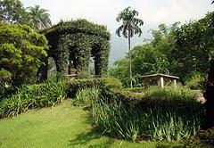 botánico1