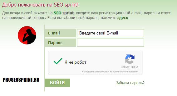 www seosprint net вход