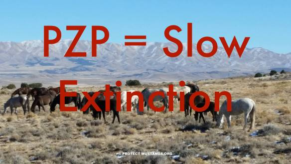 PZP = Slow Extinction