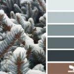 'snowy tones' courtesy of designseeds.com
