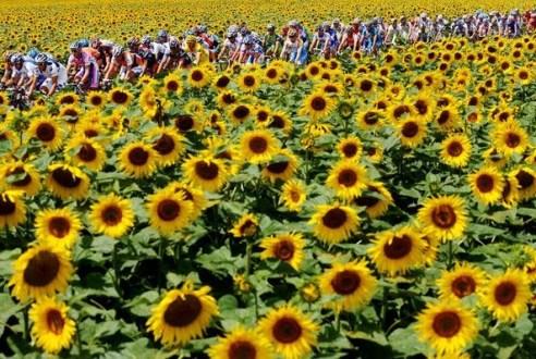 Tour de France 20 July
