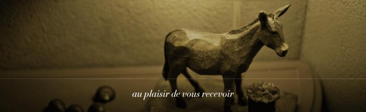 Ane Sur Le Toit Merindol5