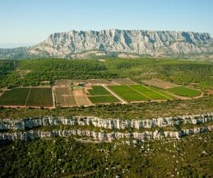 Provence wine tasting
