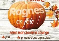 Fete de Courge 05 November Rognes