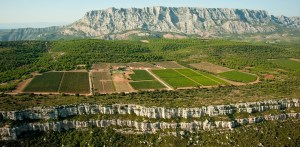 Wine-Tasting-in-Provence-Domaine-des-Masques