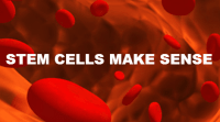 featured-stem-cells