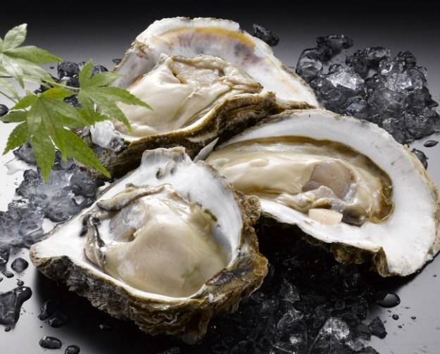 岩牡蠣イメージ
