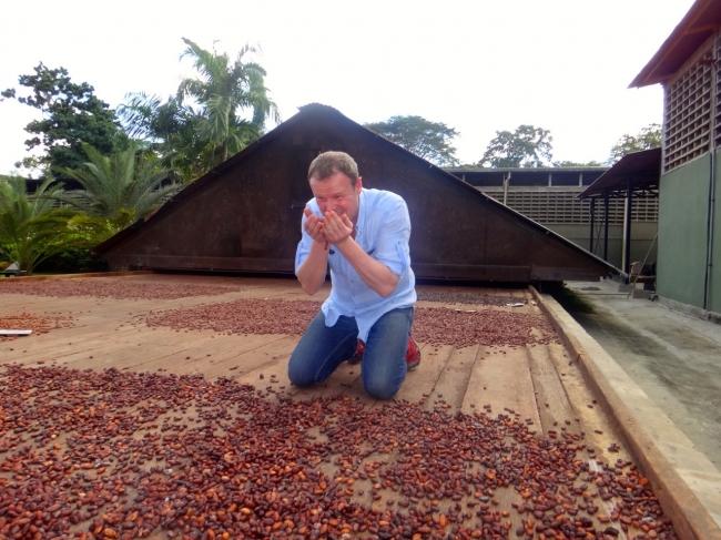 ベネズエラのカカオ農園でカカオの出来を確認している