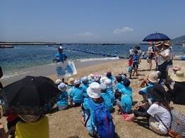 海辺のイルカ学習会(イメージ)