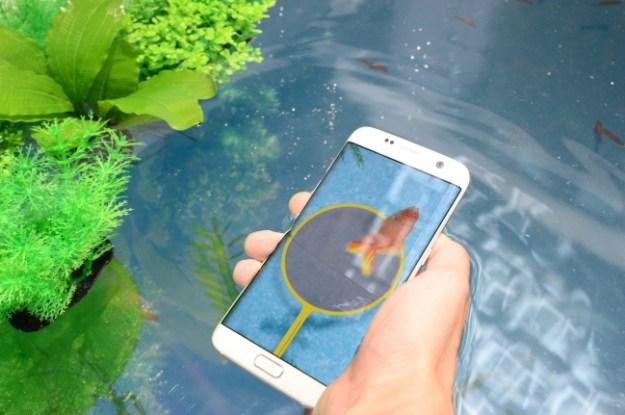 デジタル金魚すくいで防水性能体験2.