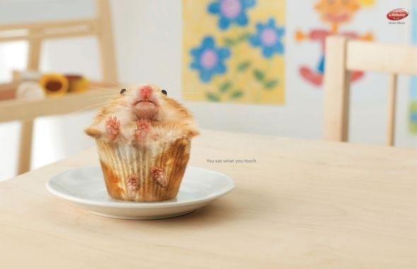 Lifebuoy Hamster Funny Print Ads Crazy but Creative