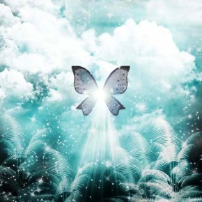 Butterfly_Dream_by_SagCorDeMaria
