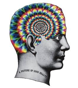trippy phrenology head