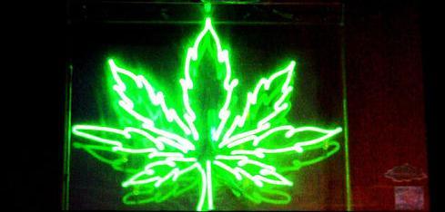 weed500.JPG