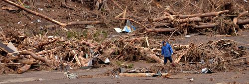 Japan Tsunami - Man Sifts Through Debris