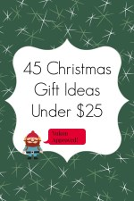 45 Christmas Gift Ideas Under $25